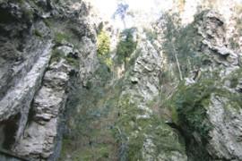 Gondwana - Zeittunnel von 500 Millionen Jahren